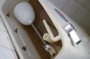 Plumbers near you help you decide if toilet leak repair in Chandler, AZ is an option for you.